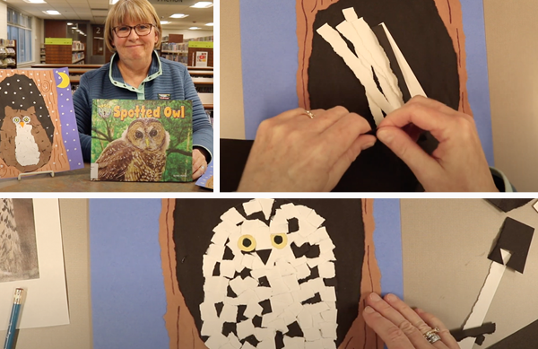 Video: Torn Paper Owl