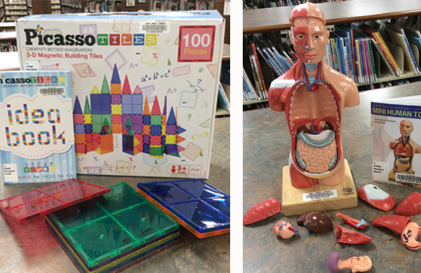 Photo collage of two photos. On the left is a photo of Picasso magnetic tiles in blue, green, red and orange resting in front of the box they belong in. The second photo is of a human body model with plastic organs displayed on the countertop adjacent.